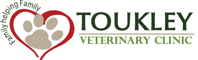 Toukley Veterinary Clinic